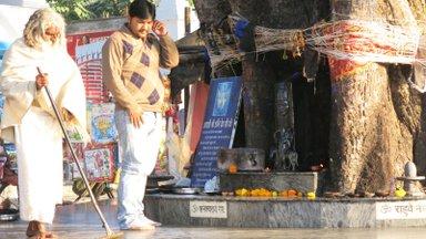 Tavaline India