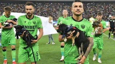 Ilus žest sportlastelt: Rumeenia jalgpallurid tutvustavad iga mängu eel varjupaikadest pärit koeri