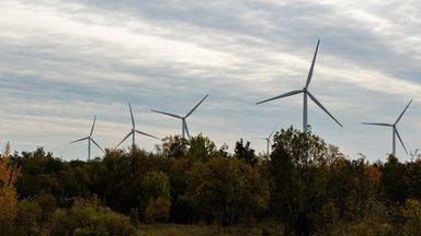 Margus Paap: kumba peaks nimetama solkelektriks – taastuvenergiat või saastavenergiat?