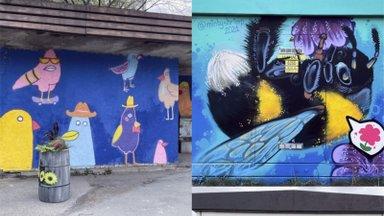 ДО и ПОСЛЕ | Ласнамяэ заиграл новыми красками. Около десятка объектов по всему району украсили суперграфикой