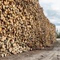 ARVUSTUS | Peame loobuma oma võimust looduse üle, et vältida katastroofe