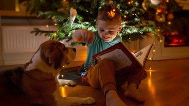ФОТО | Смотрите, как отмечали Новый год и Рождество наши читатели. Ждем ваши семейные праздничные фото на конкурс!