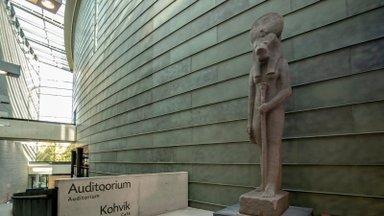 KIIRENDATUD VIDEO   Kumu valmistub suurnäituseks: aatriumisse paigutati nelja meetri kõrgune jumalanna Sehmeti kuju koopia