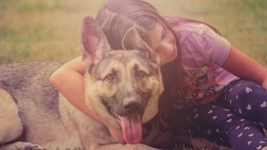 Koertekoolitaja annab nõu: kuidas peaks laps käituma võõra koera läheduses?