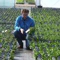 VIDEOKOOLITUS | Millised on selle kevade uued tulijad taimemaailmas?