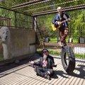 Tallinna loomaaed paneb luuletajad puuri