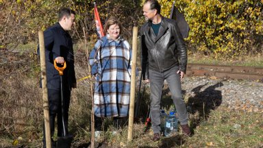 FOTOD | Paljassaarde istutati tulevase PÖFF-i pargi esimene puu