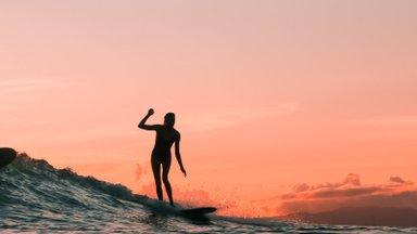 Девушка дня. Бизнес-леди с доской для серфинга: чем Дженни Мелия очаровывает своих подписчиков?