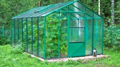 Mida tuleb kasvuhoonet valides kindlasti tähele panna?