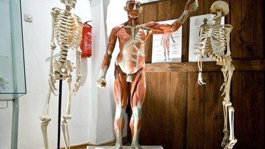 Miks on lihased pinges ja kuidas sellest tundest vabaneda? Tule ja kuula loengus!