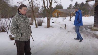 MAALEHE DOKFILM | Värsketel jälgedel: hundid piirasid Läänemaa pere talu