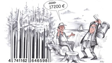17 200 eurot preemiaks selle eest, et oled laisk ja lohakas metsaomanik? Õiglane või mitte?