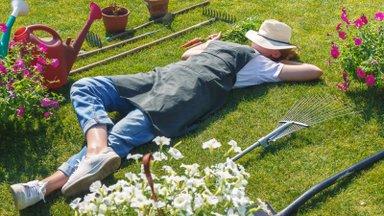 Kaitse aiataimi kõrvetava kuuma eest ja pane tähele, et on 5 aiatööd, mida sa praegu mingil juhul teha ei tohi!