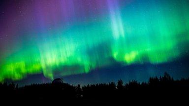 """""""Надоело целыми ночами сидеть на холоде в лесу"""": глава Балтийского астрономического сообщества рассказал о том, как построил обсерваторию"""