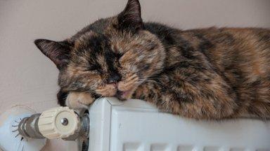 Millega küttes saab maja kõige soodsamalt soojaks?