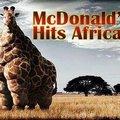 McDonald's hits Africa :D