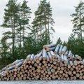 Värske metsainventuur annab teada, et raiemaht kahaneb ja mets kasvab