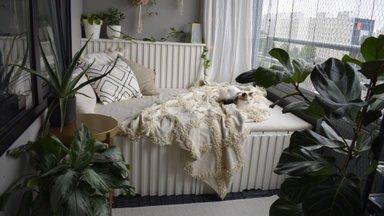ФОТО | Вот они, самые красивые балконы Ласнамяэ! Смотрите, кто победил в конкурсе
