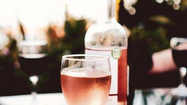 Sommeljee Annamari Nikkel selgitab: millised veinid praegu moes on? Ja kuidas üldse tekivad veinitrendid?