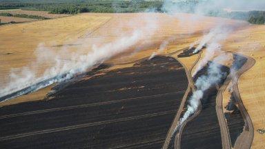 VIDEO ja FOTOD | Jõgevamaal põles viljapõld kaheksa hektari ulatuses, tuld kustutasid mitme maakonna päästjad