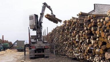 KUULA SAADET | Puidu põletamine energiaks on süsinikuneutraalne vaid paberite järgi