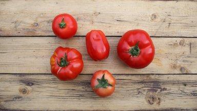 Kuidas säilitada vilju, mida kohe ei jõua ära süüa?