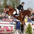 Parimad Eesti hobused pälvivad tunnustust