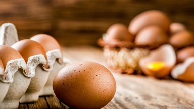Seda sa küll ei teadnud: miks mune peab säilitama tipp all