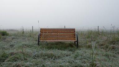 Прохладная погода сохранится и на выходных: возможны ночные заморозки