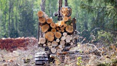 Ossinovski: puidu masspõletamise eelnõu on keskkonnavaenulik ja põhiseadusvastane
