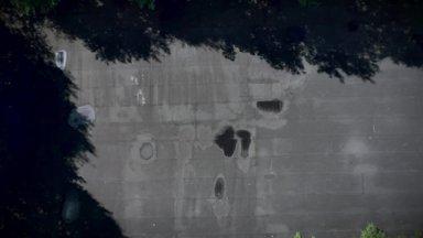 Tuumavarjend Kesk-Eesti metsas
