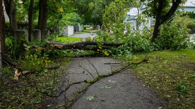 В преддверии осенних бурь: специалист объясняет, как защитить свой дом от штормов