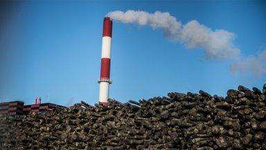 FAKTIKONTROLL | Kas sotsid on tõesti vastu elektrijaamades hakkpuidu põletamisele?
