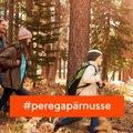 Koolivaheajaks Pärnusse: seitse suurepärast ideed, mida siin sügisel teha